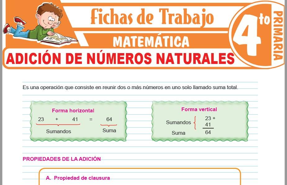 Modelos de la Ficha de Adición de números naturales para Cuarto de Primaria