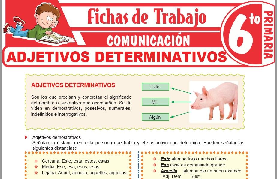 Modelos de la Ficha de Adjetivos determinativos demostrativos, posesivos e indefinidos para Sexto de Primaria