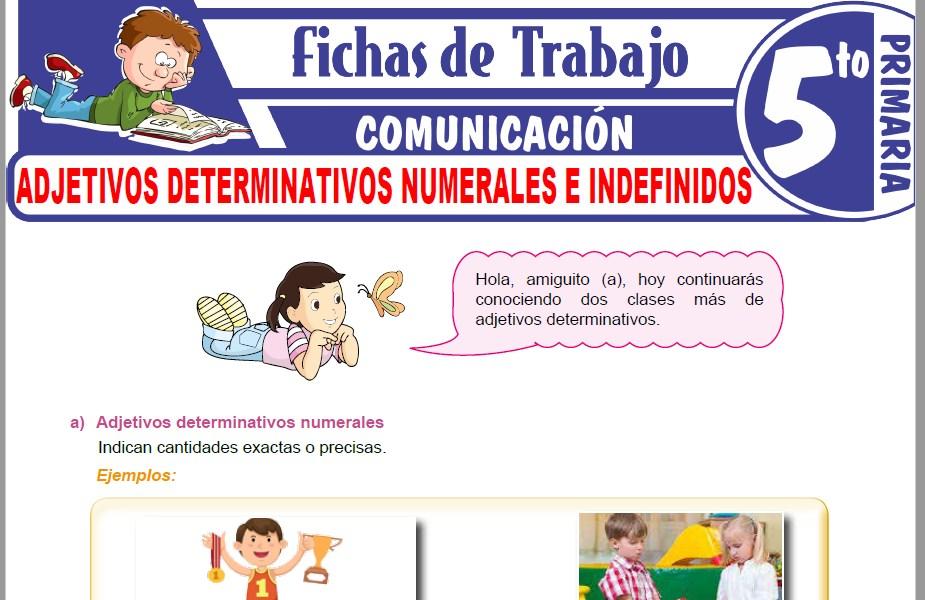Modelos de la Ficha de Adjetivos determinativos numerales e indefinidos para Quinto de Primaria