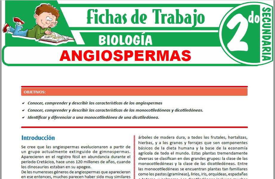 Modelos de la Ficha de Angiospermas para Segundo de Secundaria