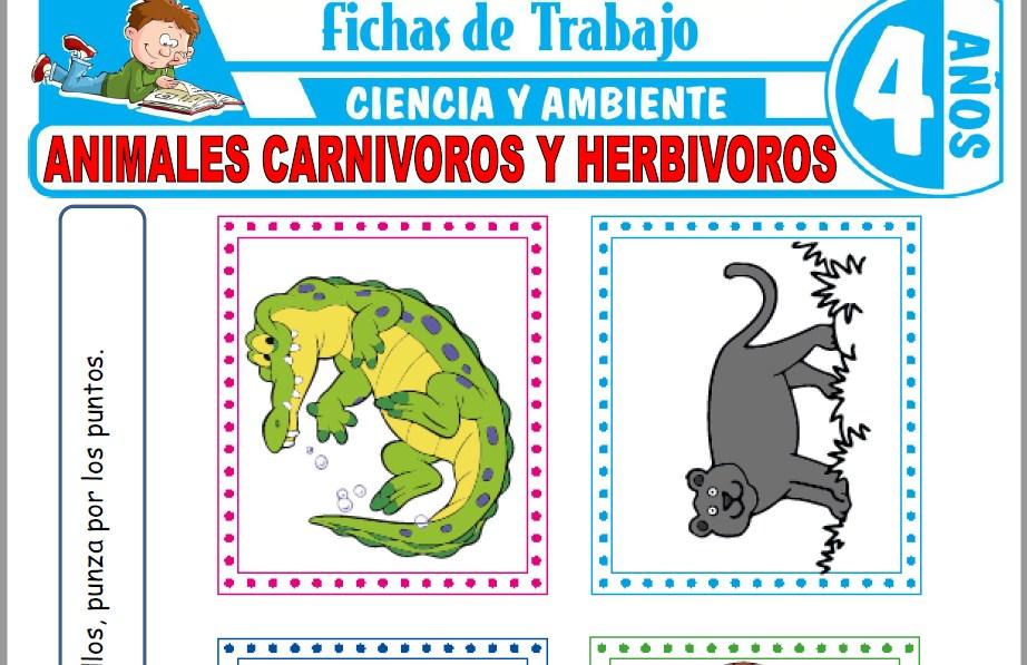 Modelos de la Ficha de Animales carnívoros y herbívoros para Niños de Cuatro Años