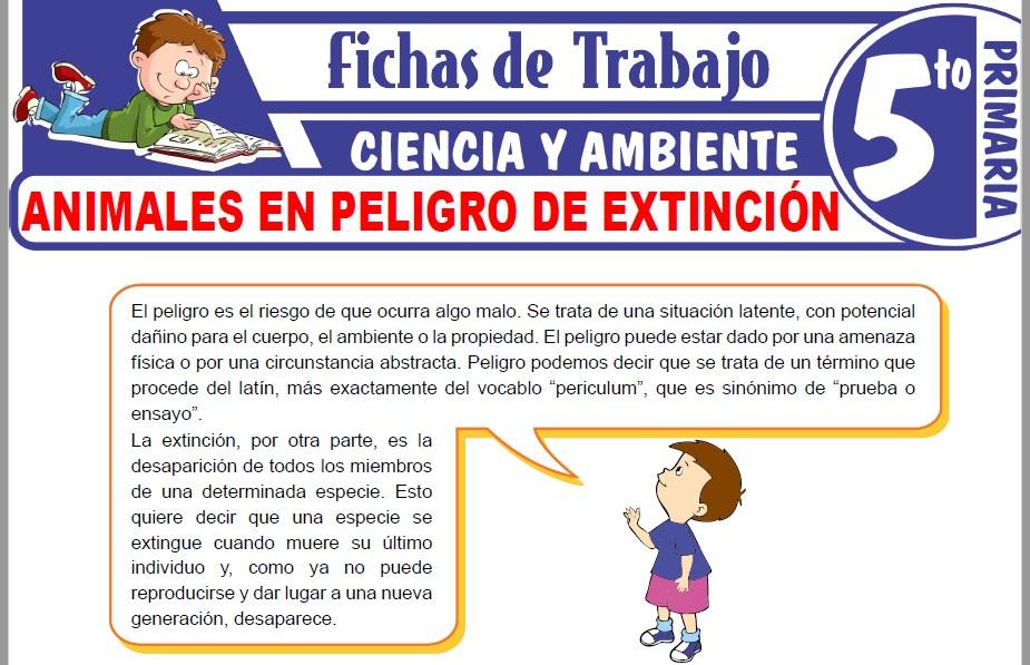 Modelos de la Ficha de Animales en peligro de extinción para Quinto de Primaria