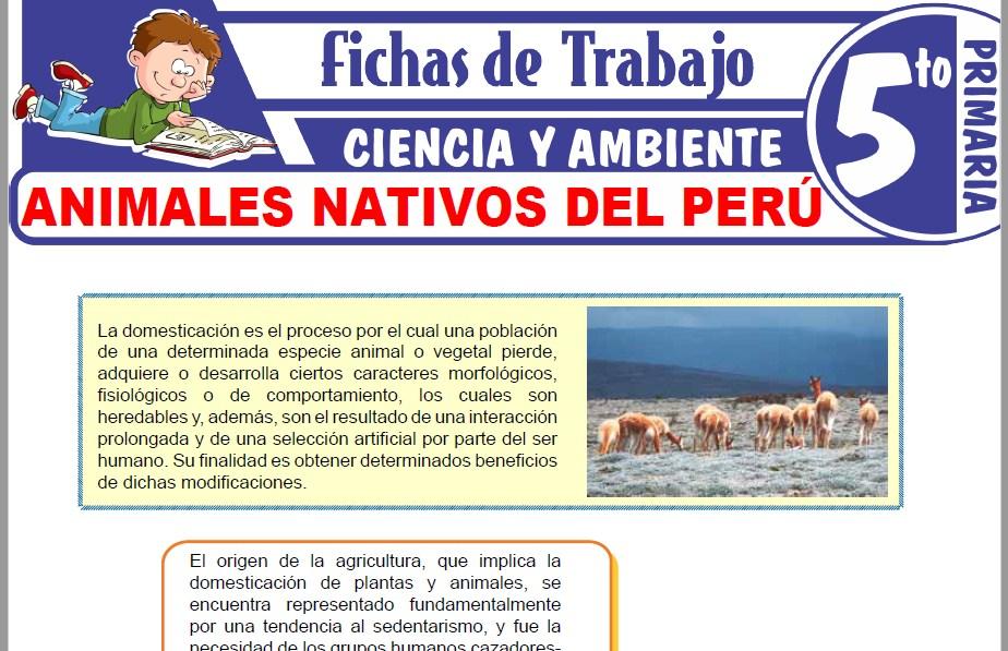Modelos de la Ficha de Animales nativos del Perú para Quinto de Primaria