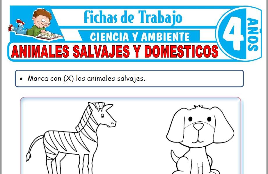 Modelos de la Ficha de Animales salvajes y domésticos para Niños de Cuatro Años