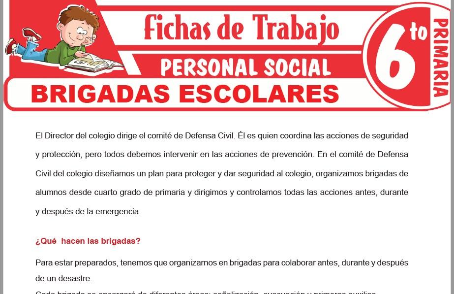 Modelos de la Ficha de Brigadas escolares para Sexto de Primaria