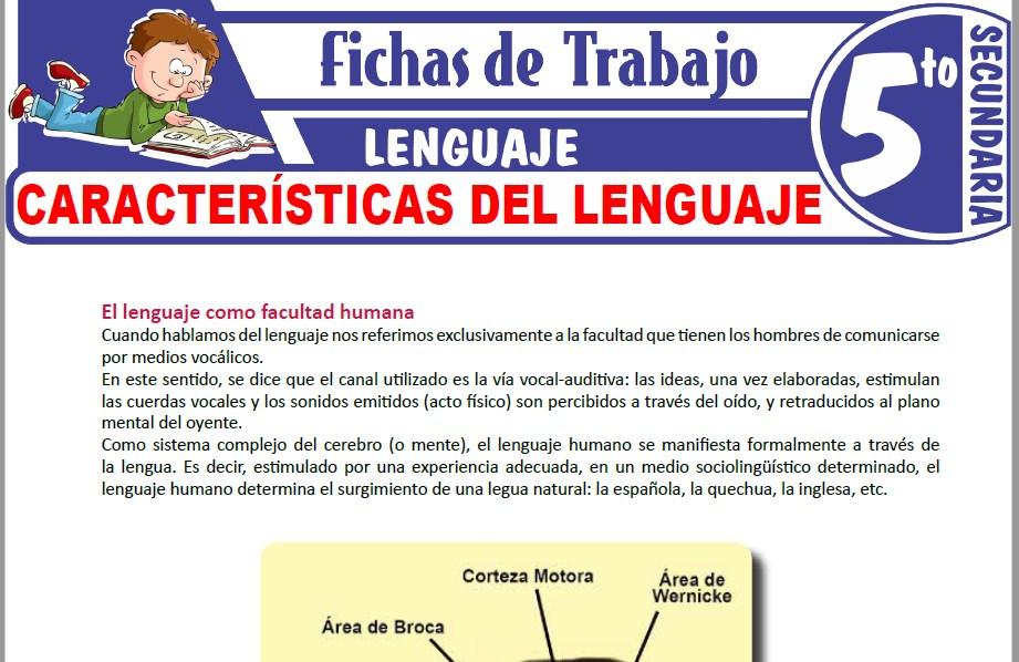Modelos de la Ficha de Características del lenguaje para Quinto de Secundaria