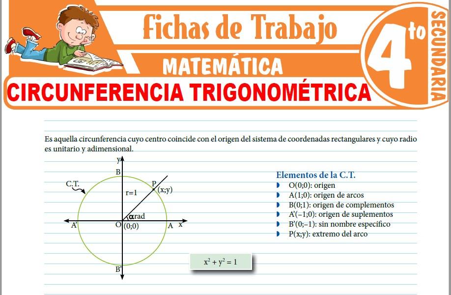 Modelos de la Ficha de Circunferencia trigonométrica para Cuarto de Secundaria