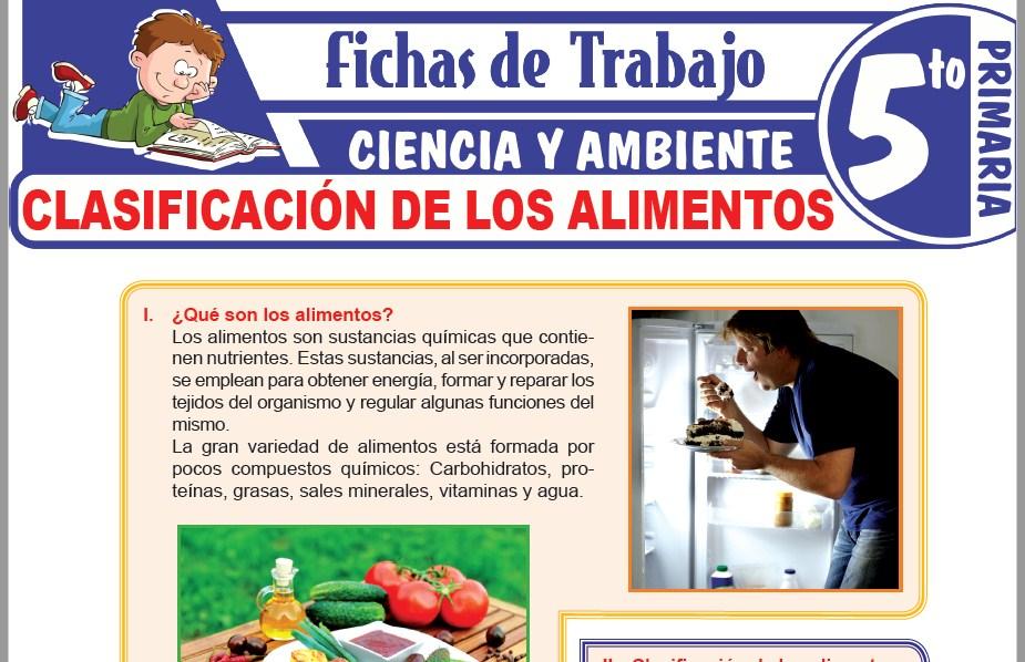 Modelos de la Ficha de Clasificación de los alimentos para Quinto de Primaria