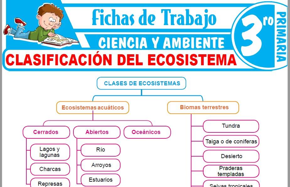 Modelos de la Ficha de Clasificación del ecosistema para Tercero de Primaria