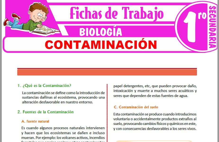 Modelos de la Ficha de Contaminación para Primero de Secundaria