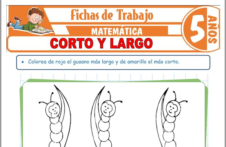Modelos de la Ficha de Corto y largo para Niños de Cinco Años