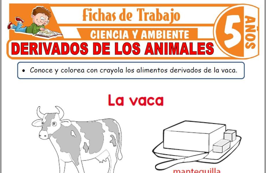 Modelos de la Ficha de Derivados de los animales para Niños de Cinco Años