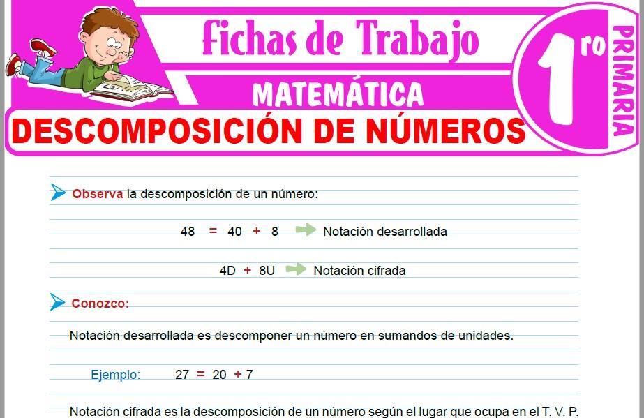 Modelos de la Ficha de Descomposición de números para Primero de Primaria
