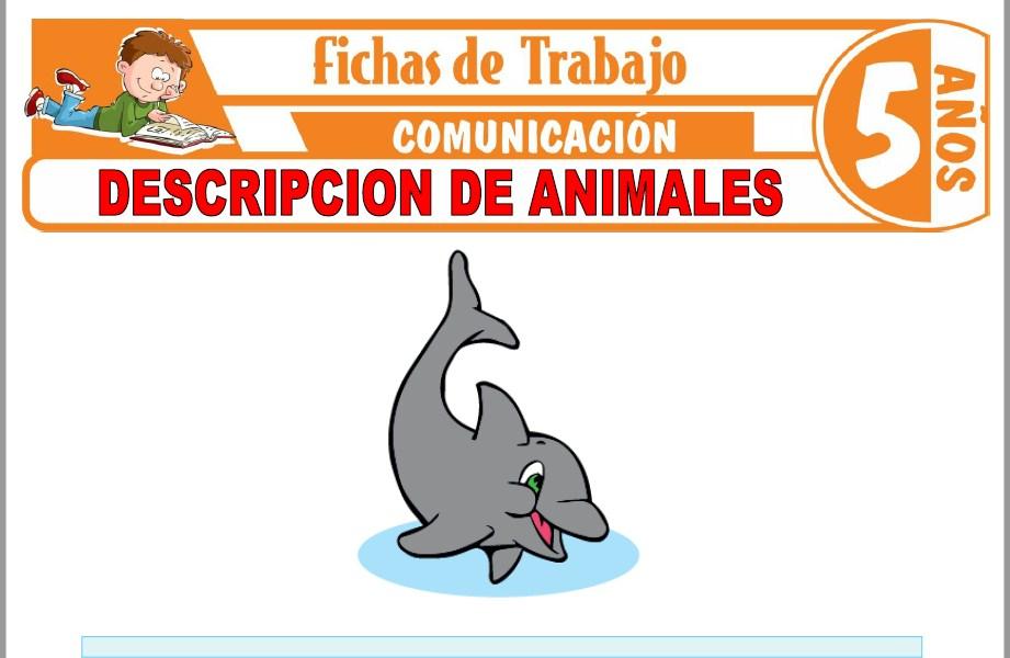 Modelos de la Ficha de Descripción de animales para Niños de Cinco Años