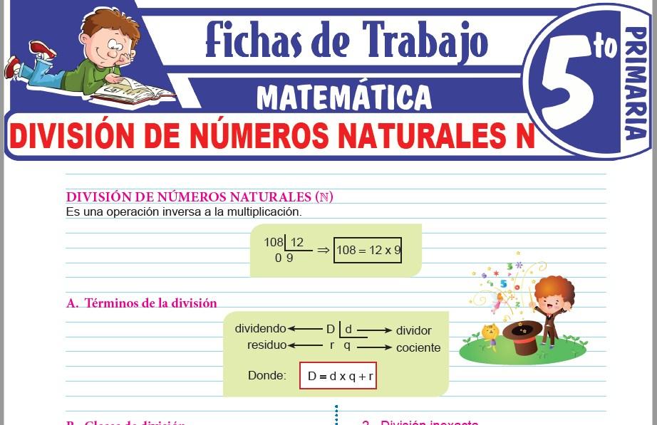 Modelos de la Ficha de División de números naturales N para Quinto de Primaria