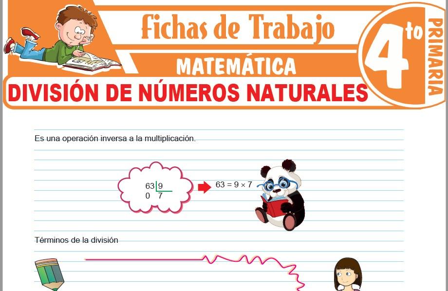 Modelos de la Ficha de División de números naturales para Cuarto de Primaria