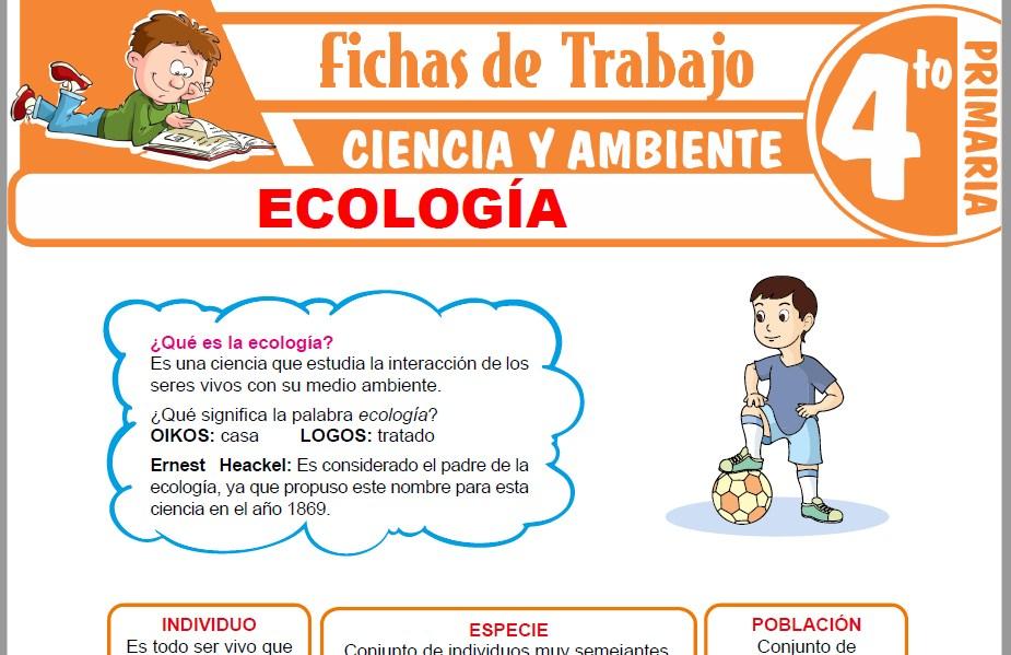 Modelos de la Ficha de Ecología para Cuarto de Primaria