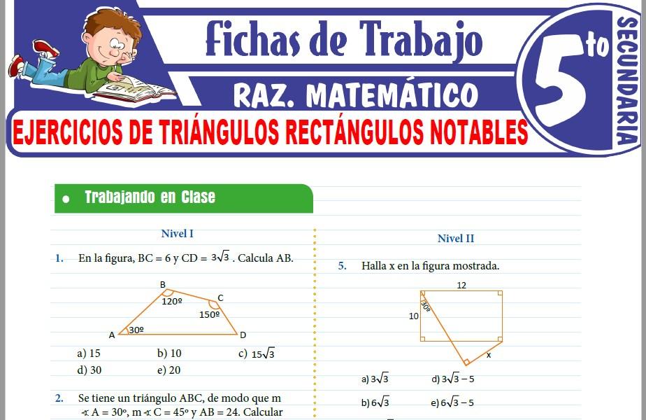 Modelos de la Ficha de Ejercicios de Triángulos rectángulos notables para Quinto de Secundaria