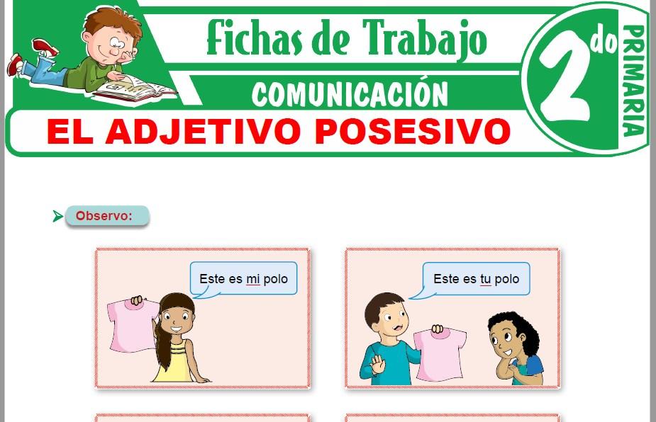 Modelos de la Ficha de El adjetivo posesivo para Segundo de Primaria