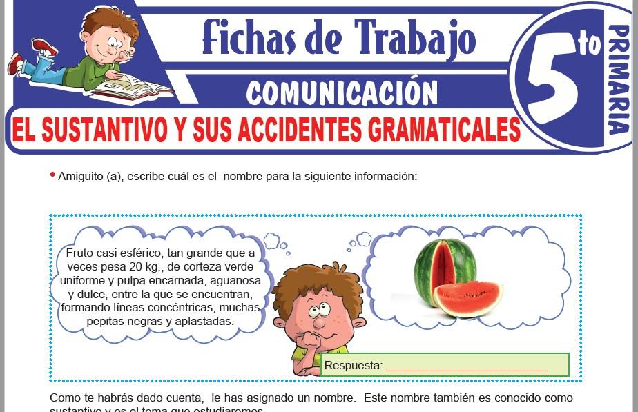 Modelos de la Ficha de El sustantivo y sus accidentes gramaticales para Quinto de Primaria