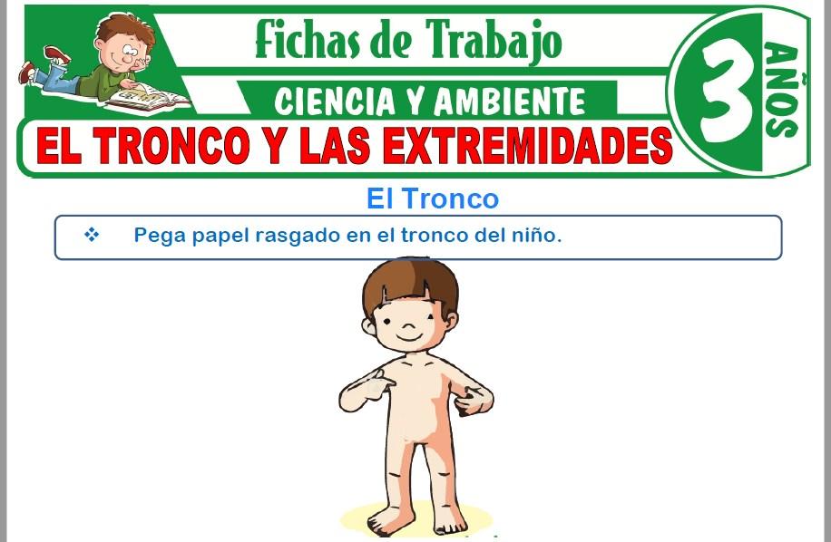 Modelos de la Ficha de El tronco y las extremidades para Niños de Tres Años