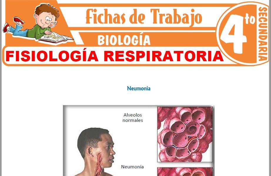 Modelos de la Ficha de Fisiología respiratoria para Cuarto de Secundaria