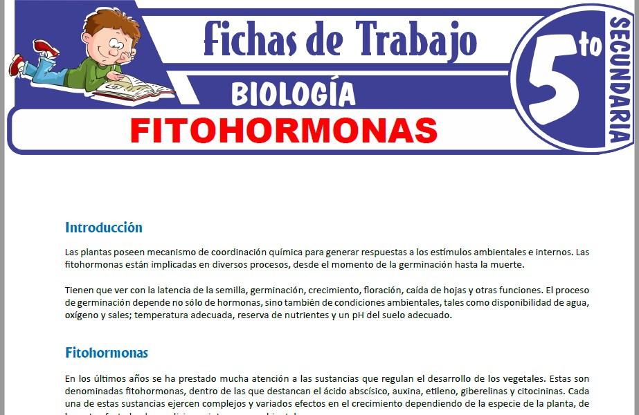 Modelos de la Ficha de Fitohormonas para Quinto de Secundaria