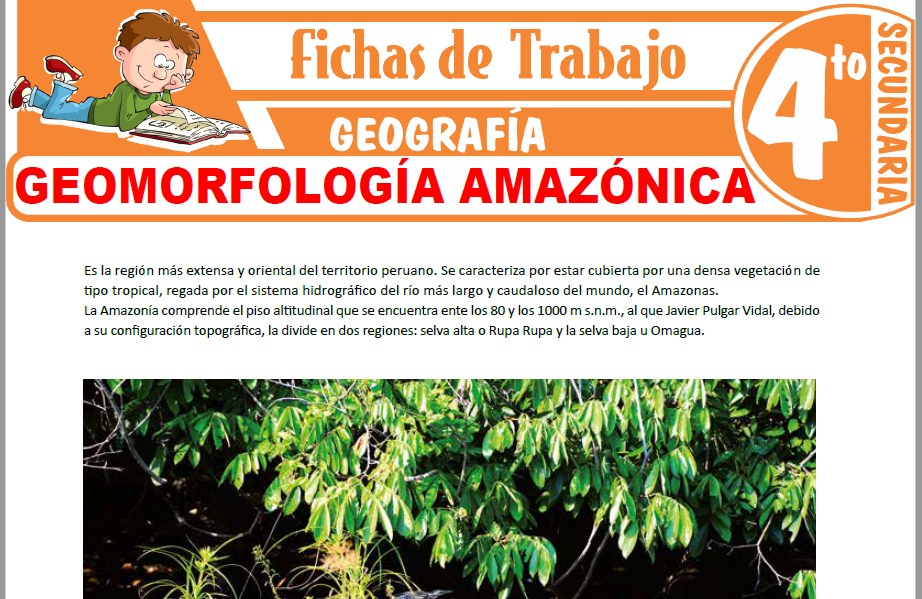 Modelos de la Ficha de Geomorfología amazónica para Cuarto de Secundaria