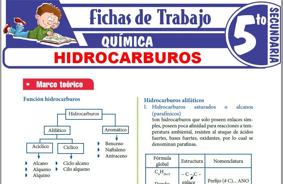 Modelos de la Ficha de Hidrocarburos para Quinto de Secundaria