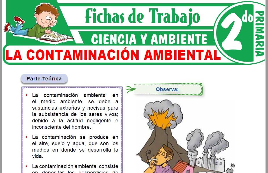 Modelos de la Ficha de La contaminación ambiental para Segundo de Primaria