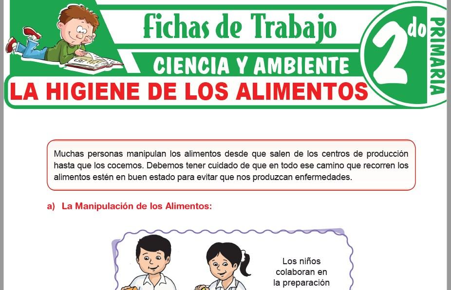 Modelos de la Ficha de La higiene de los alimentos para Segundo de Primaria