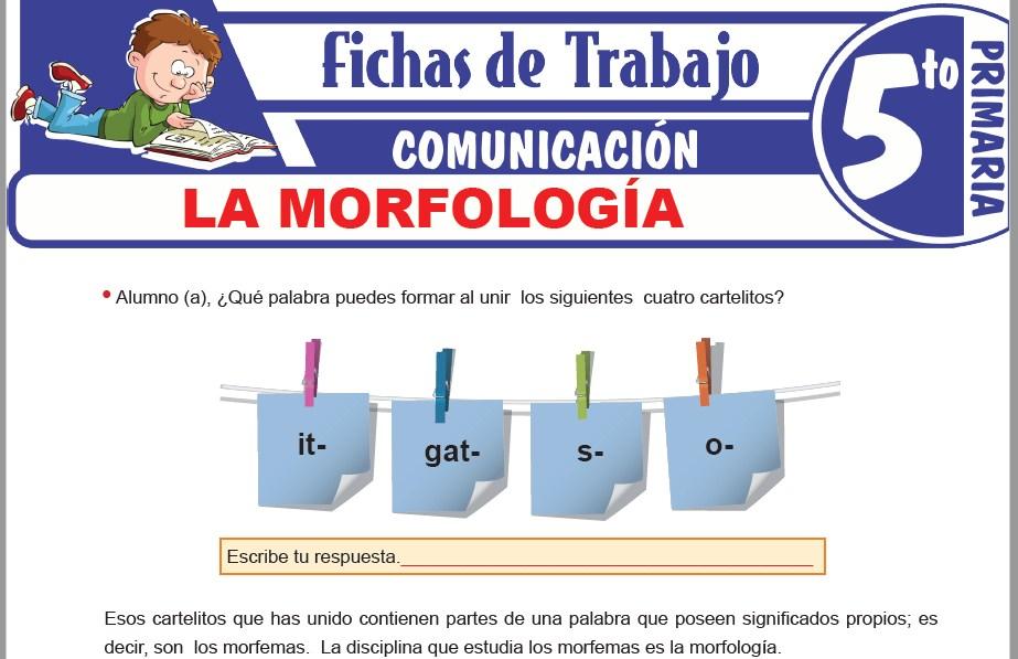 Modelos de la Ficha de La morfología para Quinto de Primaria