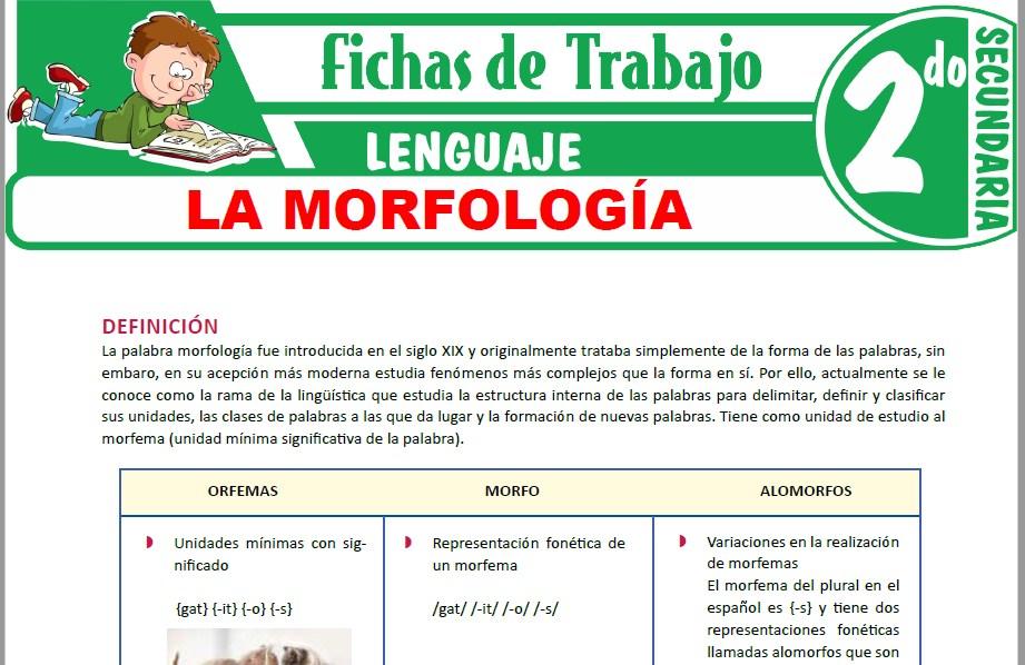 Modelos de la Ficha de La morfología para Segundo de Secundaria