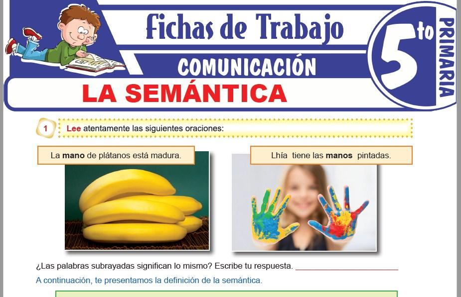 Modelos de la Ficha de La semántica para Quinto de Primaria