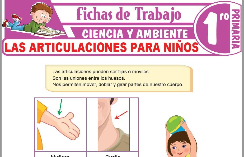 Modelos de la Ficha de Las articulaciones para niños para Primero de Primaria