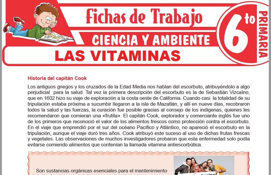 Modelos de la Ficha de Las vitaminas para Sexto de Primaria