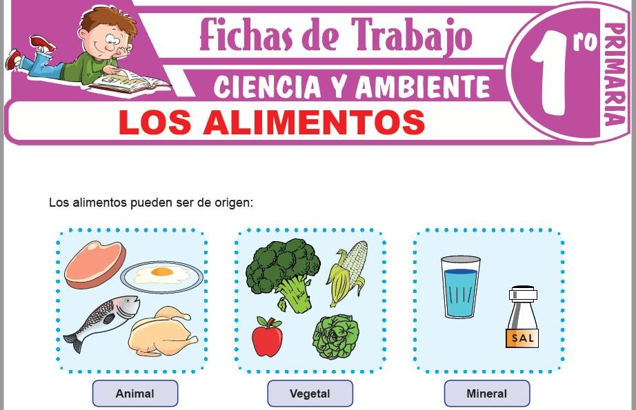Modelos de la Ficha de Los alimentos para Primero de Primaria