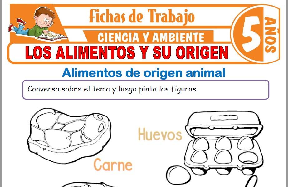 Los alimentos y su origen para Niños de Cinco Años