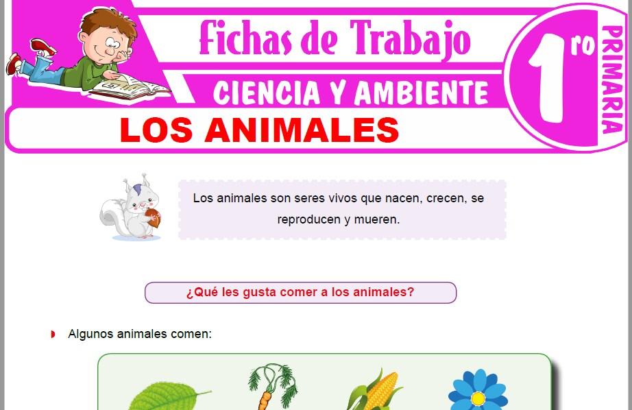 Modelos de la Ficha de Los animales para Primero de Primaria