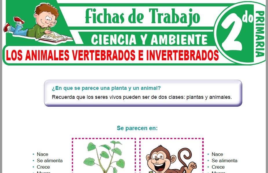 Modelos de la Ficha de Los animales vertebrados e invertebrados para Segundo de Primaria