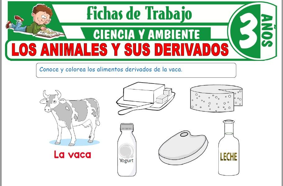 Modelos de la Ficha de Los animales y sus derivados para Niños de Tres Años