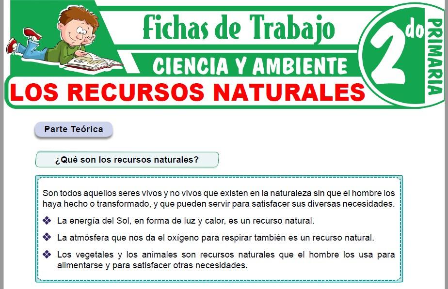 Modelos de la Ficha de Los recursos naturales para Segundo de Primaria