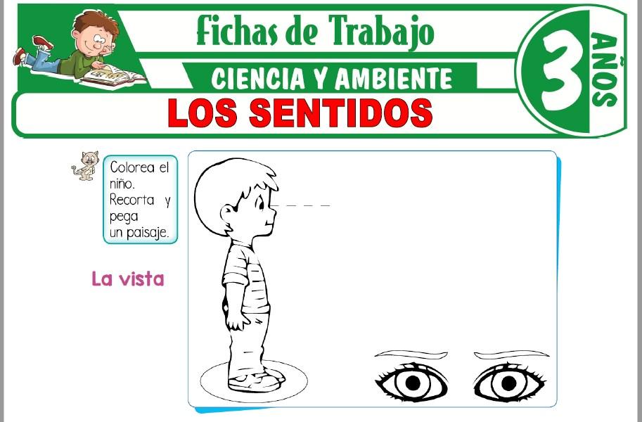 Modelos de la Ficha de Los sentidos para Niños de Tres Años