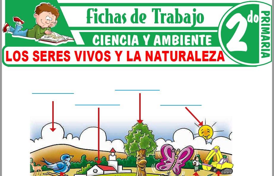 Modelos de la Ficha de Los seres vivos y la naturaleza para Segundo de Primaria