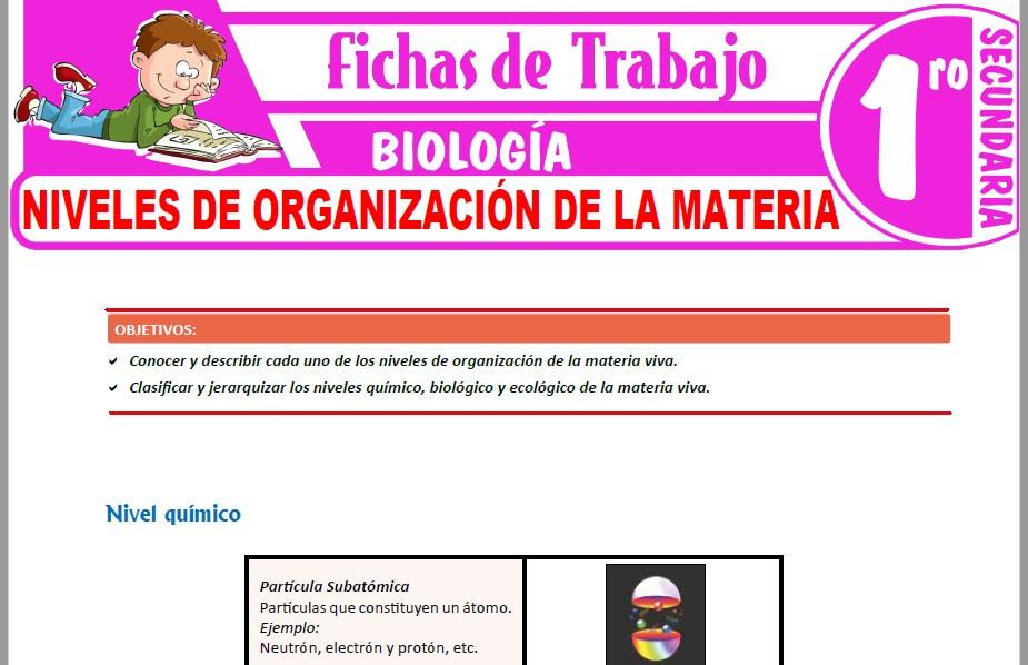 Modelos de la Ficha de Niveles de organización de la materia para Primero de Secundaria