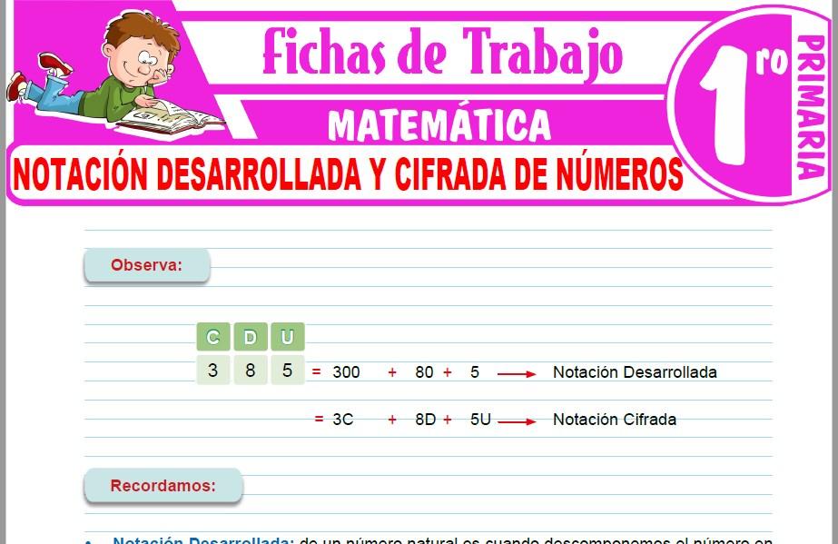 Modelos de la Ficha de Notación desarrollada y cifrada de números para Primero de Primaria