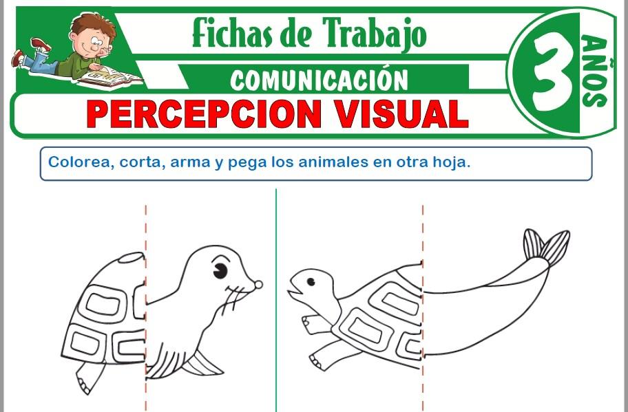Modelos de la Ficha de Percepción visual para Niños de Tres Años