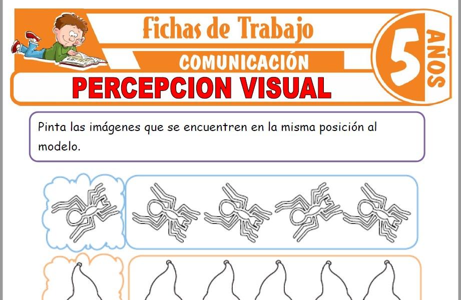 Modelos de la Ficha de Percepcion visual para Niños de Cinco Años