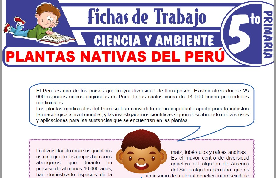 Modelos de la Ficha de Plantas nativas del Perú para Quinto de Primaria