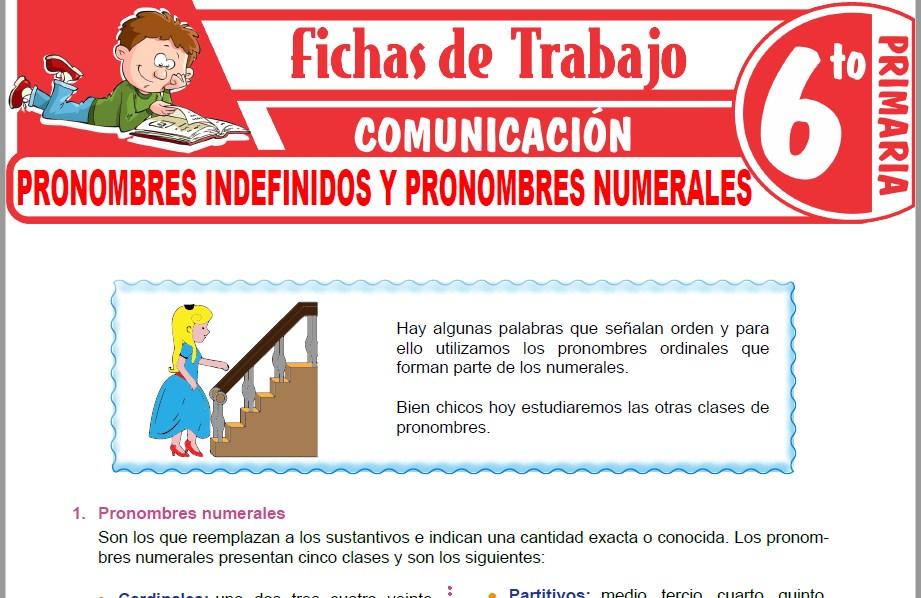 Modelos de la Ficha de Pronombres indefinidos y pronombres numerales para Sexto de Primaria